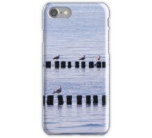 roost of the seagulls iPhone Case/Skin