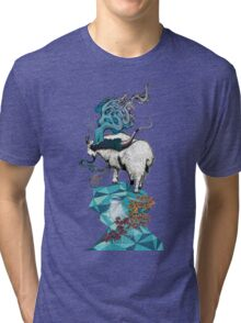 Seeking New Heights Tri-blend T-Shirt