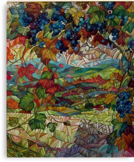 the vineyard by elisabetta trevisan