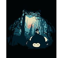 The Sleeping Forest Photographic Print