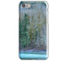 Whatcom County iPhone Case/Skin