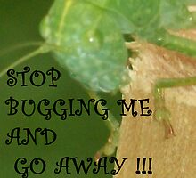 STOP BUGGING ME AND GO AWAY by Michelle BarlondSmith