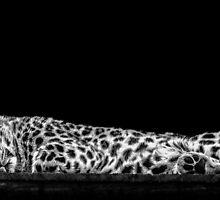 Sleeping by Brian Dukes