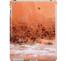 Desert Dusk by the Salt Lake iPad Case/Skin