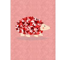 Love Hedgehog Photographic Print
