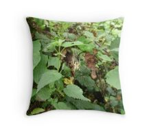 spider waiting in web Throw Pillow