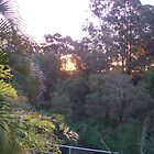 Sunset from my balcony by Jess Jones