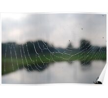 Orb Weaver Web on Reflected Image Poster