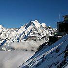 Schilthorn Alpine view 7 by David Hutcheson