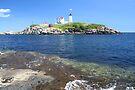 Cape Neddick Maine Lighthouse III by Allen Lucas