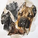 Cane Corso /Ghost by BarbBarcikKeith