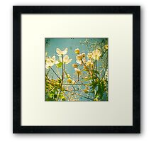 Look Up and You Will See Framed Print