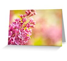 Lilac flowerets blooming bright Greeting Card