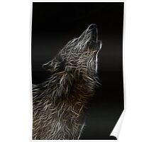 wolf howl  Poster