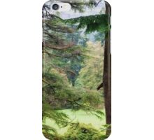 Autumnal Trees in Benmore Botanical Garden. Scotland iPhone Case/Skin