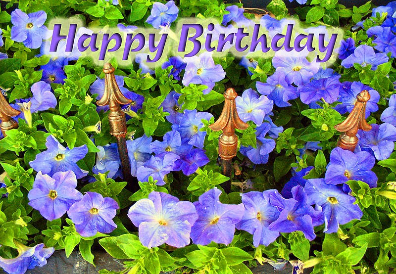Purple Garden Happy Birthday Greeting Cards By Donna Grayson Redbubble