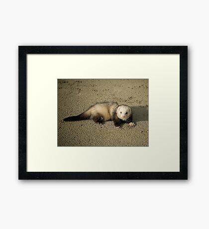 Frodo (Baggins) Framed Print