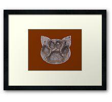 Furry Friends Paw Framed Print