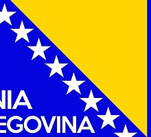 flag of bosnia herzegovina by tony4urban