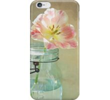Vintage Inspired Pink and Yellow Tulip in Blue Jar iPhone Case/Skin