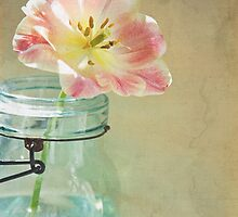 Vintage Inspired Pink and Yellow Tulip in Blue Jar by BrookeRyanPhoto