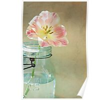 Vintage Inspired Pink and Yellow Tulip in Blue Jar Poster