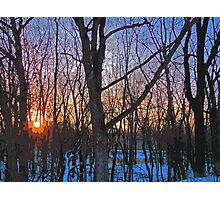 Sunrise Behind The Trees Digital Painting From Photograph Photographic Print
