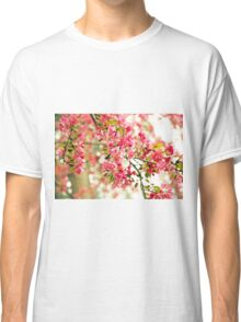 Pink and White Apple Blossoms  Classic T-Shirt