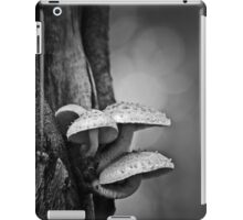 permanence iPad Case/Skin