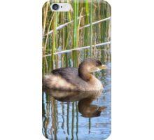 Wakodahatchee Duck iPhone Case/Skin