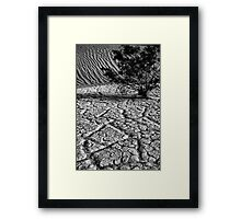 Life in  Death Valley Framed Print