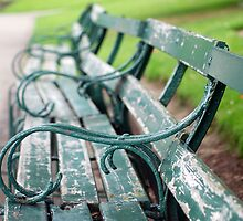 Park Benches by incurablehippie