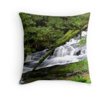Triplet Falls Lower Section Throw Pillow
