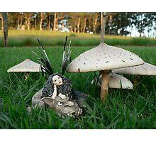 Faerie Folk & Toadstools Photographic Print