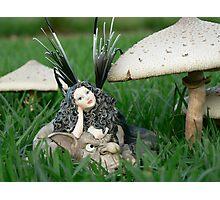 Faerie Folk & Toadstools II Photographic Print