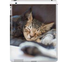 Brotherly Love iPad Case/Skin