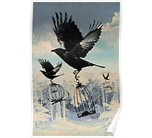 Crow thief Poster