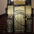 Art Nouveau lift door in Orleans, France by Denise Martin