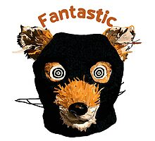 fantastic mr fox by Haidee Bain