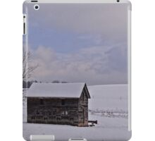 Desolate Day iPad Case/Skin