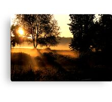 Early Morn Coffee Zone Canvas Print
