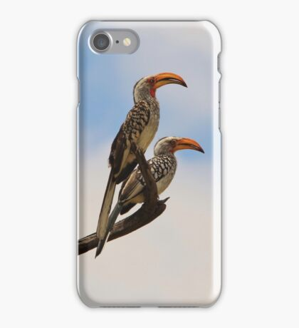 Yellow Billed Hornbill - Beak of Format iPhone Case/Skin
