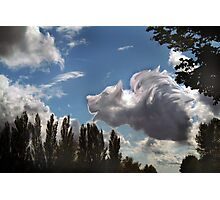 """""""When Pigs Fly"""" Photographic Print"""