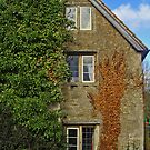 Vine House, LACOCK, WILTSHIRE, ENGLAND by kojobar