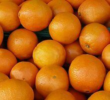 Orange... by Nuh Sarche