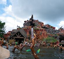 Splash Mountain by Attractions Merch Museum