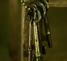 Keys by Andrea Barnett