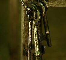 Keys by Andrea Barnett
