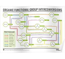 Organic Chemistry Reaction Map Poster