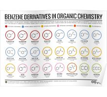 Benzene Derivatives in Organic Chemistry Poster